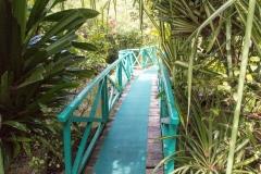 Bohol Hotel Botanica05155