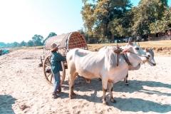 Mandalay04466