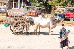 Mandalay04463