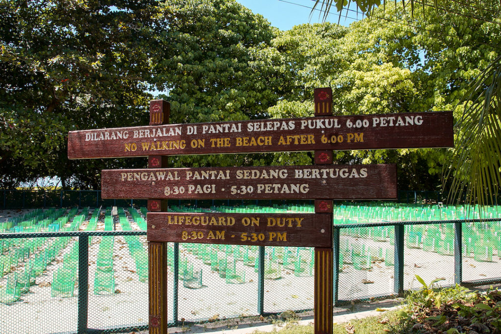 a sign with turtle hatchery on Selingaan island