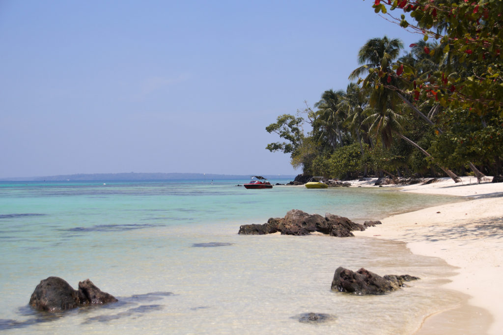 Beach with palm trees and rocks. travel Indonesia in two weeks