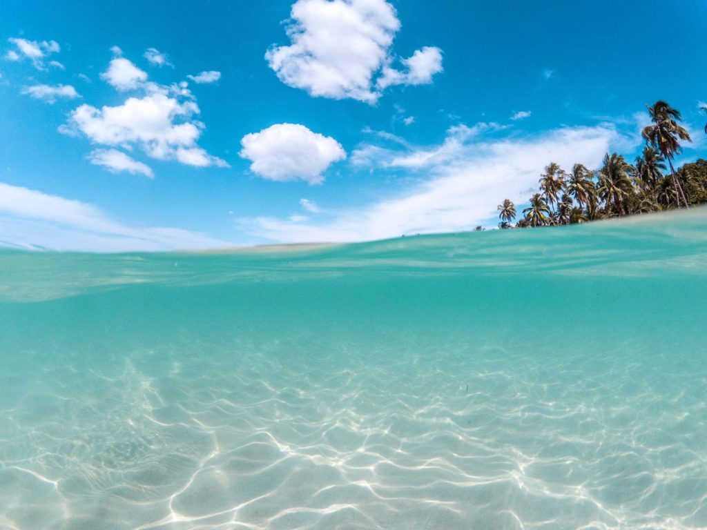 a half and half picture showing blue shallow water and skies with clouds and a few palm trees in the distance