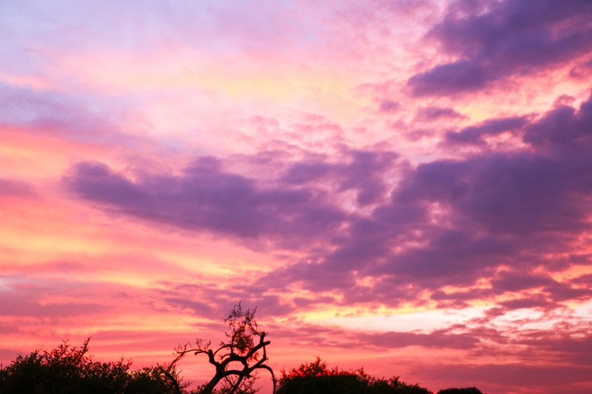 pinky sky with purple tones during sunset at Ayutthaya