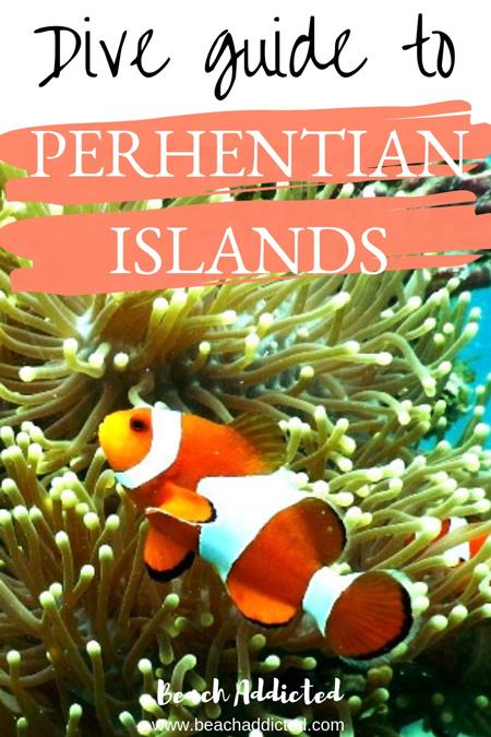 perhentian diving #perhentianislands#perhentianislandsmalaysia#perhentianislandsdiving#malaysia