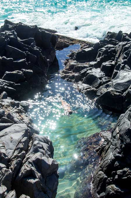 Fairy pools in Noosa Heads