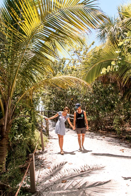 a couple holding hands walking among green palm trees