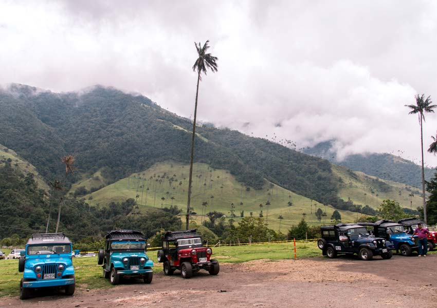 a view on the green valley and parking lot with jeeps