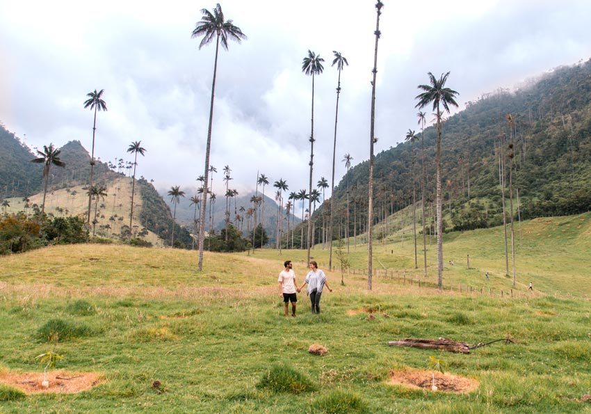 taking photo in the Corora Valley with wax palm trees around us