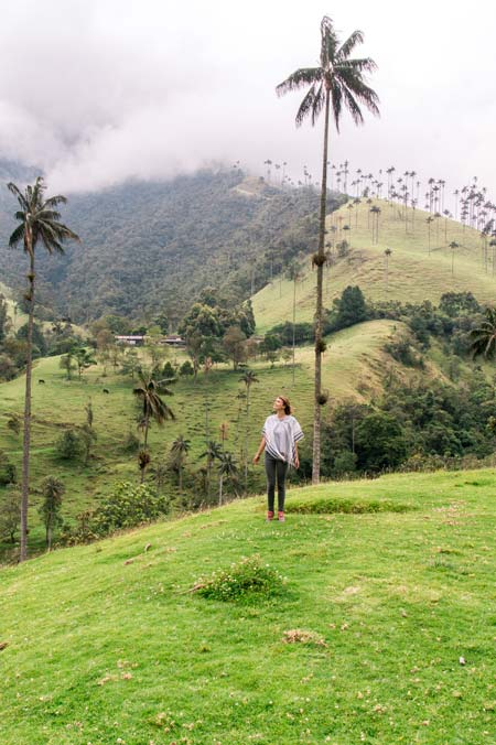 a girl looking up at the tall palm trees in the green Valle de Cocora near Salento