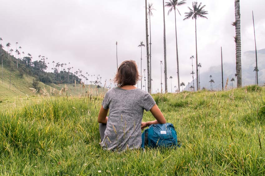 a girl looking at the tallest palm trees in the world