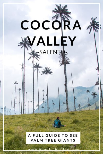 complete guide to Salento and to Valle de Cocora