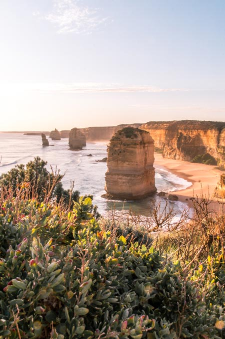 view on limestone cliffs which forms 12 Apostles with bush in the foreground