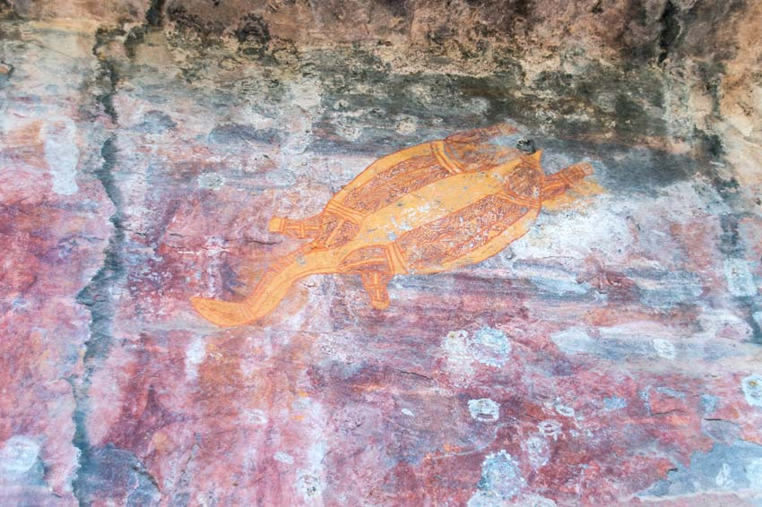 a turtle painted on rock by aborigines