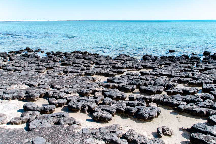 collection of black stones on the beach with blue water in the background