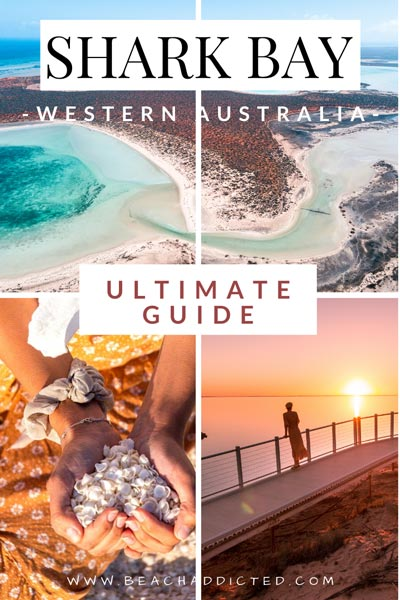 ultimate guide to Shark bay in Western Australia with safety tips and best places to see
