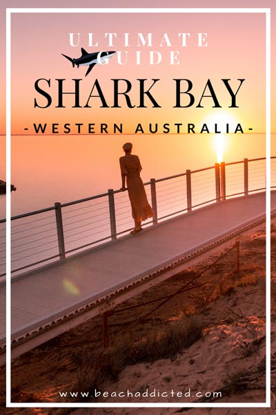 a full guide to Shark Bay 12 things to do in Shark Bay