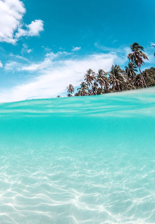 turquoise water and palm trees on Koh Kood, Thailand