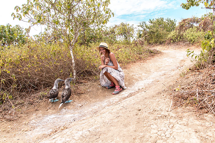woman sitting on the ground and two birds with blue feet, green trees and dirt road