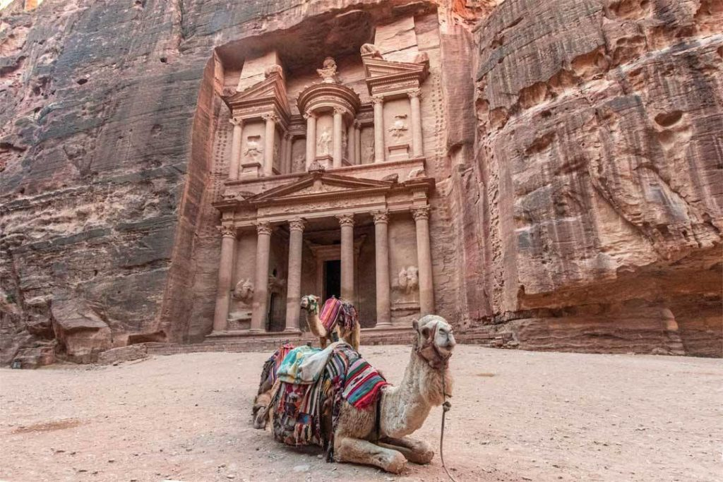 camel sitting on the ground in front of the treasure in Petra, Jordan which needs to be in your bucket list places