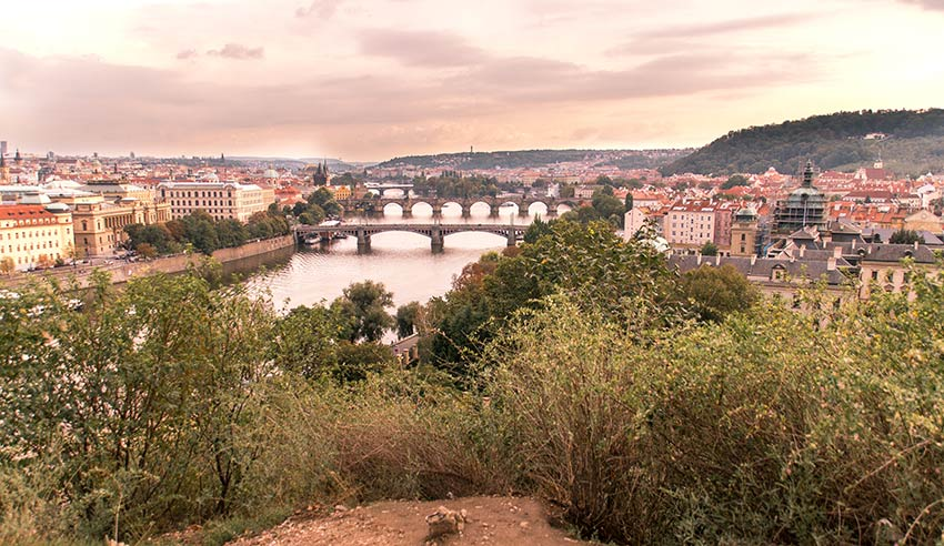 a view on the bridges of Prague, green bush and pinky sky in Letna park which is a must photo spot in Prague