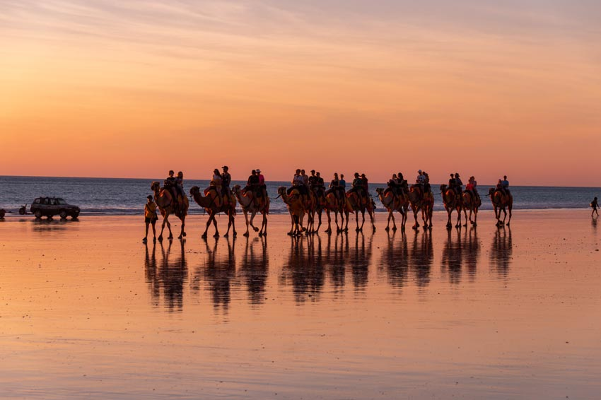 orange sky with people riding camels on the beach