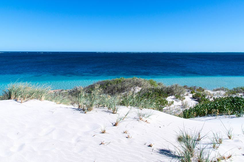 white sand dunes, green bush and a view on the blue ocean