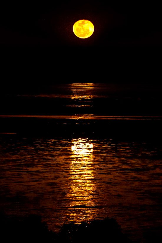 yellow moon and reflection over the dark water, named as Staircase to the moon