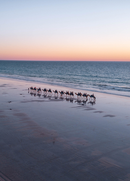 drone shot with camel riding on the beach, one of the best things to see in Broome